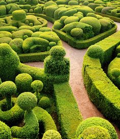 The Most Beautiful Places in France: Gardens of Marqueyssac, Dordogne