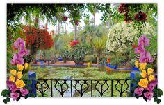 DIVAGAR SOBRE TUDO UM POUCO: pela beleza das flores... flores são obras de arte da natureza, que encantam pela sua perfeição, suavidade, beleza e simplicidade. Observá-las, sempre me trouxe uma doce sensação de paz interior, tornando esses momentos especiais