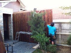 """Cubrir muro pandereta con madera 1x10"""" Deco, Gardens, Patio Roof, Side Yards, Walls, Tambourine, Fence Design, Septum, Deko"""
