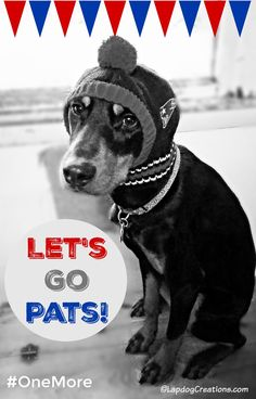We're ready for the Big Game - are you? Let's Go Pats! #PatriotsNation #OneMore ©LapdogCreations Dog Mom   Rescue Dog   Patriots Nation   Football   Doberman   Dog Products
