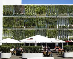 A green facade is a type of vertical garden installed on a building wall, designed to beautify, cool and shade the building. In some cases, a facade may not have a support structure since the plants are able to attach directly to the wall's surface. Green Architecture, Concept Architecture, Sustainable Architecture, Sustainable Design, Landscape Architecture, Building Facade, Green Building, Building Design, Green Facade