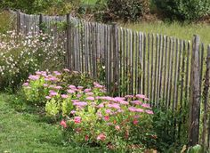 Easy methods to set up a ganivelle fence within the backyard Garden Fencing, Fence, Diy Jardin, British Garden, Garden Pictures, Outdoor Walls, Geraniums, Permaculture, Trees To Plant