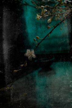 Take some more tea.. -  Katia Chausheva