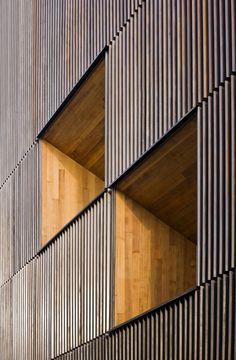 MANGADO ARCHITECTS, Roland Halbe - www.rolandhalbe.de, Pedro Pegenaute · Museo arqueológico de Vitoria · Divisare