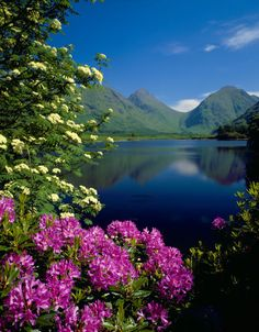 Glen Etive, Highland, Scotland  by VK Guy