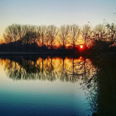 """""""Good morning holland.  #wintertime #winter #sunrise #sun #nature_perfection #nature #earth #planet #trees #water #holland #morning #beauty #instadaily…"""""""