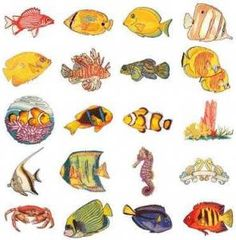 OESD 11180 Tropical Fish Embroidery USB Stick 20 Design Collection Multi Format CD, Formats: .ART, .DST, .EXP, .HUS, .PES, .JEF, .PCS, .SEW, .XXX « StoreBreak.com – Away from the busy stores