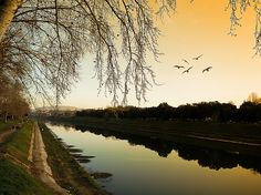 Have a great weekend by Florence (Cascine Park) by Buonaventura's & Carla's, via Flickr