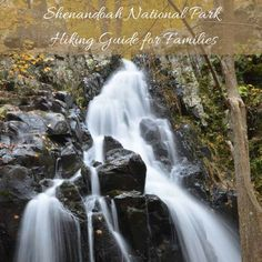 #Shenandoah National Park #hiking for families | tipsforfamilytrips.com #vacationideas