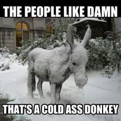 Another Macklemore reference. Too funny.