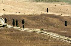 la Via Francigena  un itinerario di 120km nelle Terre di Siena www.terresiena.it/francigena