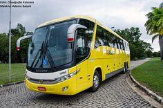 Ônibus com o layout da Viação Kaissara, bem semelhante ao padrão da Viação Itapemirim. Empresa assumiu linhas de grande demanda e possui estratégias para ampliar atuação, inclusive com parcerias operacionais com outras companhias de ônibus. Divulgação - Kaissara