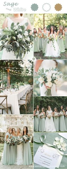 Top 6 Sage Green Wedding Color Palettes---Sage & White, simple and elegant neutral wedding color schemes for spring fall and winter, pretty tablescapes with romantic lightings, diy botanical bouquets, custom cheap wedding invitation set. Neutral Wedding Colors, Spring Wedding Colors, Wedding Color Schemes, Wedding Colors Green, Color Themes For Wedding, Popular Wedding Colors, Wedding Ideas Green, Wedding Color Palettes, February Wedding Colors