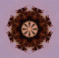 a portait kaleidoscope