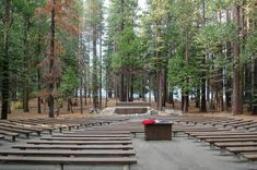 Outdoor movie theater in front of Pinecrest Lake, Pinecrest CA