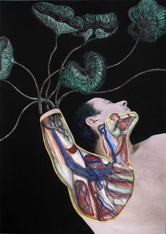 Part of theL'herbierseriesbyLaurent Millet.    Digital print/painting, 30x42cm, 2011.    #anatomy