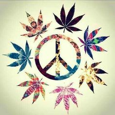 Peace Loving Hippies ☮️