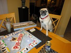 Pugs love to play board games and here is a funny pug picture showing just that. Pug-opoly has been one of the most popular dog games for over 3 years now! Funny Pug Pictures, Fawn Pug, Pug Mug, Dog Games, My Buddy, Pug Love, Fleas, Pugs, Picnic Blanket