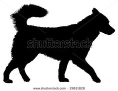 Résultats Google Recherche d'images correspondant à http://image.shutterstock.com/display_pic_with_logo/56831/56831,1241414744,16/stock-vector-silhouette-of-a-dog-of-breed-malamute-29611828.jpg