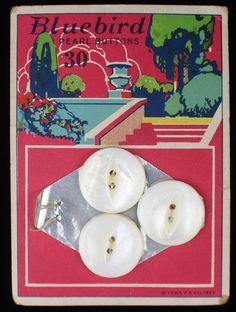 ButtonArtMuseum.com - Antique Bluebird Mother OF Pearl Shell Buttons Original Color Graphic Store Card