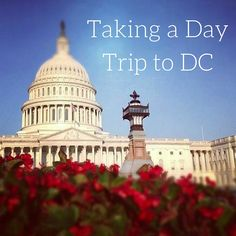Washington DC is one of the most historic and fascinating cities in the United States.   I've had the chance to visit America's capital city twice over the past few years, and each time, I learned more things about my country's history. For any tourist who has never been to the states before, I'd probably rank