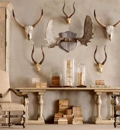 these are fake, but we have real antlers/skulls laying around the house anyway...