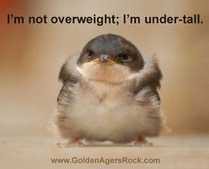 Who says I'm overweight?