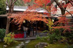 Small shop in Sagano, Arashiyama, with a small inner garden during the autumn season.