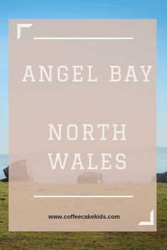 Angel Bay in North Wales. The perfect place to watch seals in their natural environment.