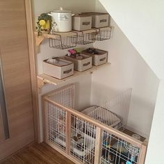Small Dog House, Diy Bunny Cage, Puppy Nursery, Dog Cots, Bunny Room, Diy Dog Crate, Pet Corner, Puppy Supplies, Stuffed Animal Storage