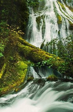 I really need to take a road trip around my home state! Panther Creek Falls, Washington State
