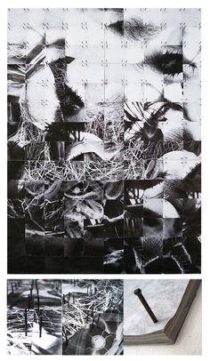"""Inside Nature"" by Shu | Formanuova Art Project"
