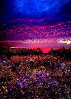 Wow – Once in a Lifetime! by Phil Koch Most beautiful pictures of the world Wow – Once in a Lifetime! by Phil Koch Most beautiful pictures of the world… Beautiful Sunset, Beautiful World, Beautiful Places, Beautiful Scenery, Simply Beautiful, All Nature, Amazing Nature, Nature Font, Flowers Nature