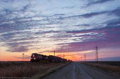 Prairie Awakening. Photo by Steve Boyko