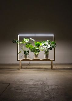 Since most people live a window-less work life, Johan Kauppi designed the GreenFrame for Glimakra of Sweden, which is a floor screen that acts as a window filled with plants.
