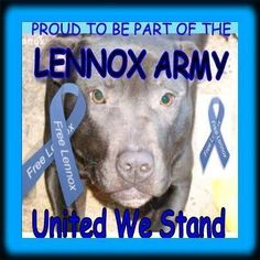 Sad day today. END BSL!