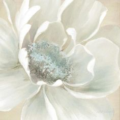 Shop for Portfolio Canvas Décor Winter Blooms II by Carol Robinson Wrapped Canvas Wall Art. Get free delivery On EVERYTHING* Overstock - Your Online Art Gallery Store! Get in rewards with Club O! Canvas Art Prints, Wall Prints, Painting Prints, Canvas Wall Art, Painting Art, Peony Painting, Art Floral, Floral Wall, Blossom Flower
