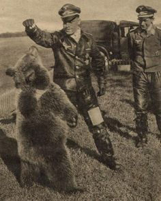 Two German Luftwaffe officers play with a bear on the Russian steppes, between 1941 and Luftwaffe, German Soldiers Ww2, German Army, Military Photos, Military Art, Vintage Photos, Vintage Photographs, Imperial Japanese Navy, Germany Ww2