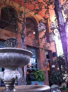 Villa Tevere - comida italiana e brasileira deliciosas, ambiente lindo e agradável - $$$