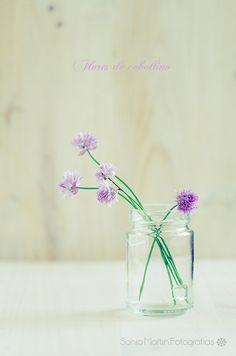 ˚ Glass Garden, Beautiful Flowers, Glass Vase, Angela, Home Decor, Home, Gardens, Flowers, Decoration Home