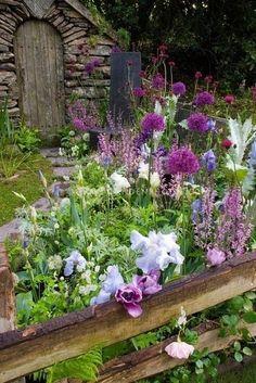 16 Besten Color In My Garden Bilder Auf Pinterest Dale Chihuly