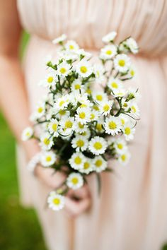 bouquet-de-marguerites