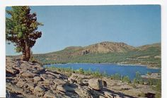 Silver Lake CA Near Kit Carson Pass Highway 88 Postcard CIRCA1950   eBay