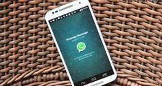 WhatsApp mantém função 'dedo duro' em grupos; saiba driblar (Anna Kellen Bull/TechTudo)
