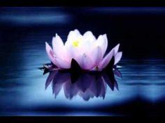 Ovo je vrlo moćna meditacija kojom se vizualizira ostvarenje konkretne želje i može se koristiti u svaku svrhu. Preporučujemo da prilikom slušanja meditacije...