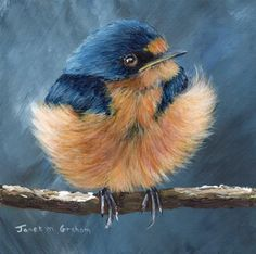 "Daily Paintworks - ""Barn Swallow"" - Original Fine Art for Sale - © Janet Graham Barn Swallow, Duck Bird, Paper Birds, Fine Art Gallery, Bird Art, Art For Sale, Graham, Photo Art, Cool Photos"