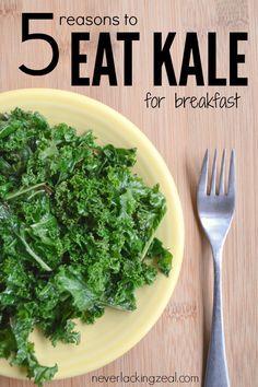 5 Reasons to Eat Kal