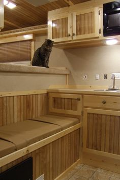 BasicLQ3.jpg our trailer is similar to this Love the cabinets!!
