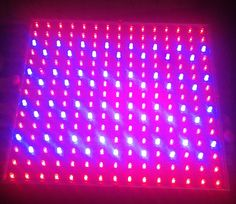 Red & Blue LED grow light - Experimental