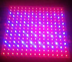 Red & Blue LED grow light - Experimental
